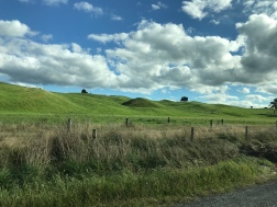 Driving from Lake Taupo to Waitomo - doesn't this look a bit like the old microsoft background??